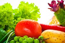 Free Vegetables Royalty Free Stock Photography - 19560857