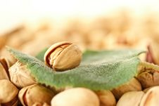 Free Pistachios Stock Images - 19560944