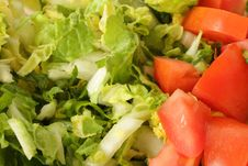 Free Lettuce And Cabbage Royalty Free Stock Photo - 19566435