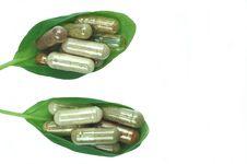 Free Herbal Capsules In Basil Leaves Royalty Free Stock Images - 19566799