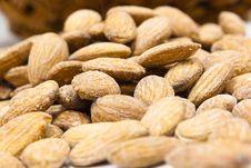 Free Almonds Macro Stock Photos - 19567023