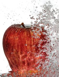 Free Bubbly Red Delicious Apple Royalty Free Stock Photo - 19567235