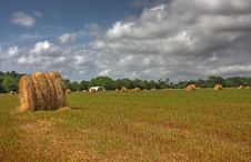 Free Hay Field Royalty Free Stock Photography - 19568217