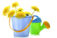 Dandelions And Children S Toys Royalty Free Stock Image