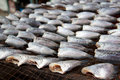 Free Gourami Is Dry Out In Fresh-food Market Stock Image - 19570141
