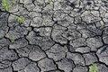 Free Dry Season Royalty Free Stock Image - 19573266