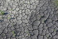 Free Season Of Drought Royalty Free Stock Image - 19573506