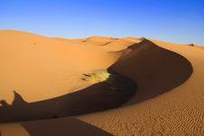 Free Sahara Desert Stock Photos - 19570813