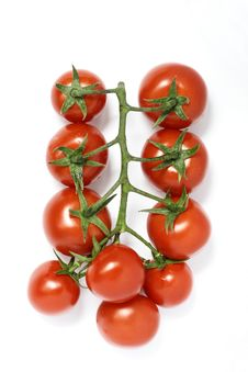 Free Tomatoes Royalty Free Stock Images - 19570859