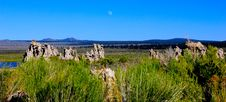 Free Mono Lake Royalty Free Stock Images - 19571479