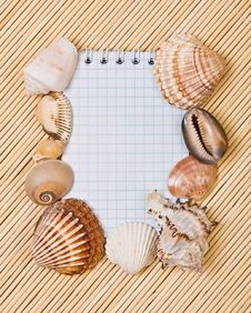 Free Notebook And Cockleshell Stock Images - 19572854