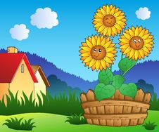 Free Meadow With Three Cute Sunflowers Royalty Free Stock Photography - 19573207