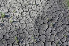 Free Season Of Drought Royalty Free Stock Image - 19573506
