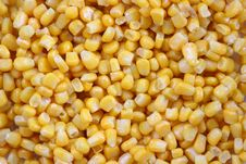 Sweet Corn Kernels Stock Photos