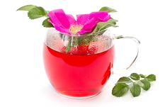 Free Wild Rose Flower And Tea Stock Image - 19575921