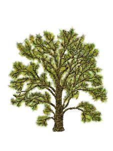 Free Tree Illustration Royalty Free Stock Images - 19577679