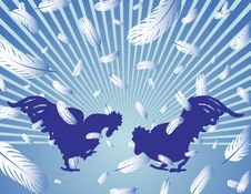 Rooster Fight Stock Image