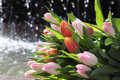Free Bunch Of Tulips On The Water Background Royalty Free Stock Photos - 19584368