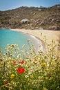 Free Beach In Mykonos, Greece Royalty Free Stock Photo - 19588505