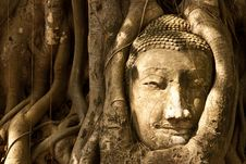 Free Buddha Head Stock Photography - 19580762