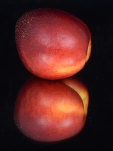 Free Nectarine Stock Photo - 19582890