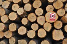 Free Wood Stock Image - 19583641