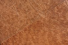 Free Leather Texture Royalty Free Stock Image - 19584846