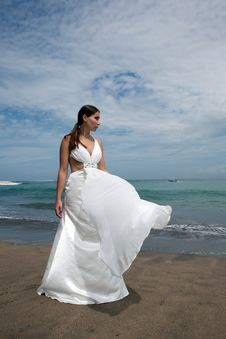 Free Happy Bride On The Beach Royalty Free Stock Photos - 19585028