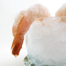 Free Frosty Shrimp Coctail Stock Photos - 19585993