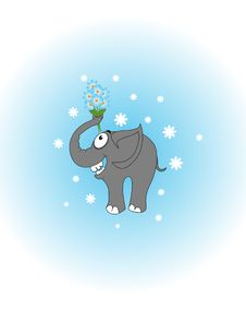 Free Elefant Stock Photography - 19586652