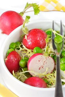 Free Fresh Spring Salad. Royalty Free Stock Photos - 19587678