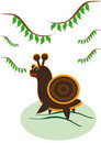 Free Small Ridiculous Snail Royalty Free Stock Photography - 19592787