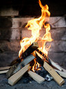 Free The Fire Royalty Free Stock Photography - 19593077