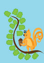 Free Squirrel In Solar Weather Tries To Get A Wood Nut Royalty Free Stock Images - 19593929