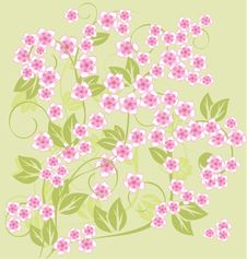 Free Spring Floral Background In Vector Stock Photo - 19590240