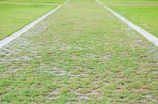 Free Grass Footpath Royalty Free Stock Images - 19593559
