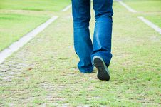 Free Grass Footpath Stock Photo - 19593590