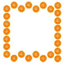 Free Background From Orange Slices Royalty Free Stock Photography - 19596247