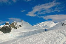 Antarctic Scenery, Snow And Blue Sky And Walker Royalty Free Stock Image