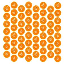 Free Background From Orange Slices Stock Images - 19596324