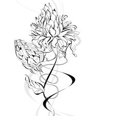Free Sketch With Flowers Royalty Free Stock Image - 19598376