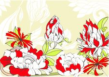 Free Template For Floral Card Royalty Free Stock Image - 19598386