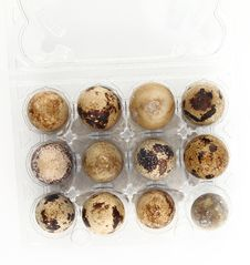 Free Quail Eggs Stock Images - 19599274