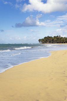 Free Vertical Beach Stock Photos - 19599413