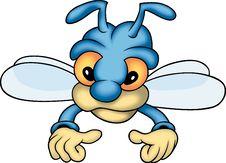 Free Blue Bee Royalty Free Stock Photos - 1960458