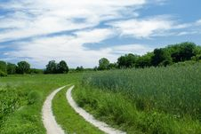 Free Road In The Green Royalty Free Stock Image - 1961046