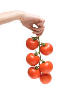 Free Hand Holding A Cluster Of Tomatoes Royalty Free Stock Images - 1962889