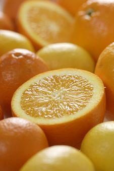 Free Slices Of Orange Stock Images - 1965084