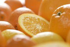 Free Slices Of Orange Stock Photos - 1965163