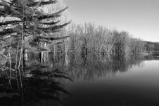 Free Reflections In Black And White Royalty Free Stock Photos - 1965408